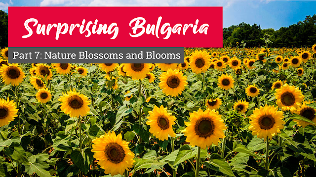 Surprising Bulgaria – Part 7: Nature Blossoms and Blooms